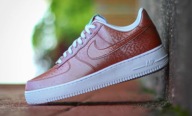 Nike Air Force 1 Low Preserved Icons