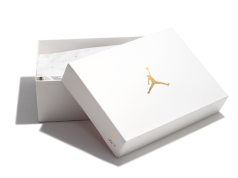 Air Jordan 10 OVO Packaging