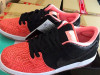 Premier Nike SB Dunk Low Salmon