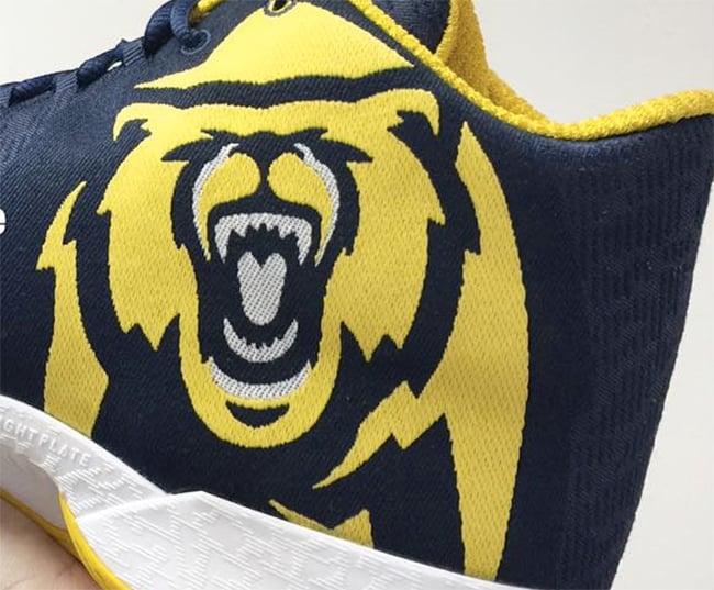 Air Jordan XX9 Cal Golden Bears