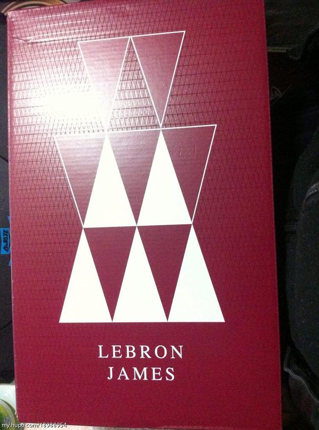 Nike LeBron Ambassador 8 USA