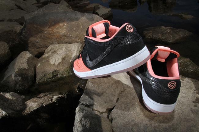 Premier Nike SB Dunk Fish Ladder