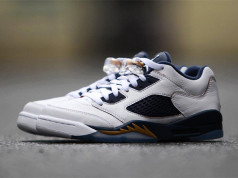 Air Jordan 5 Low Retro Dunk From Above