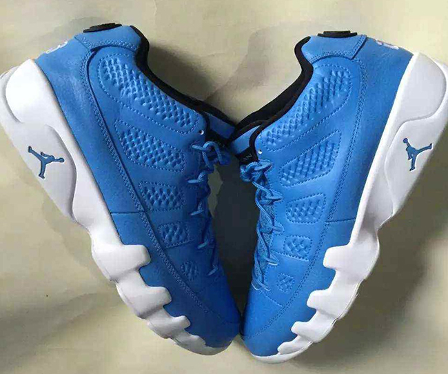 Pantone Air Jordan 9 Low Blue