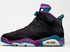 Air Jordan 6 Hornets Black Iridescent 2017