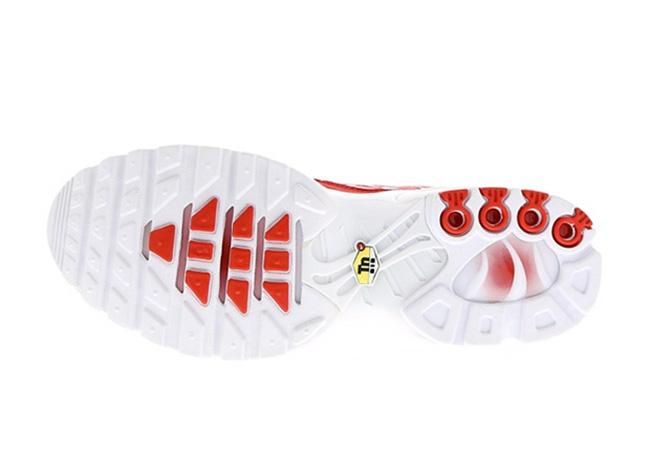 Nike Air Max Plus Mesh University Red