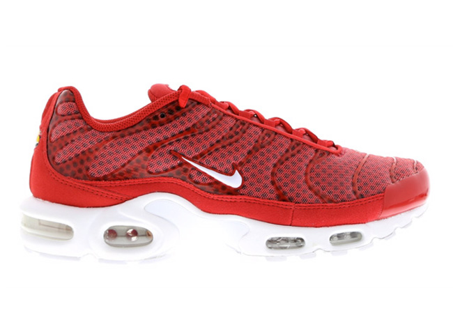 Nike Air Max Plus Mesh University Red