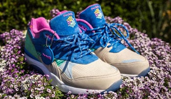 Packer Shoes Reebok Ventilator Spring