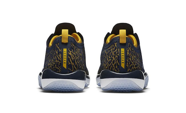 Jordan Trainer 1 Low Michigan