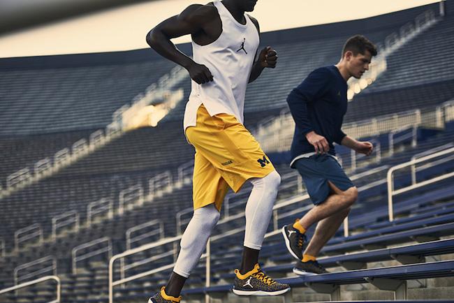 Michigan Jordan Trainer 1 Low