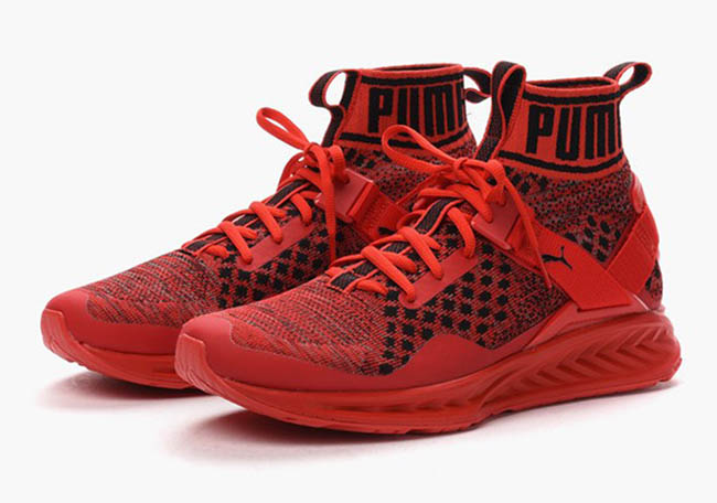 Puma Ignite EvoKnit Red