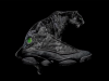 Air Jordan 13 Black Cat Panther