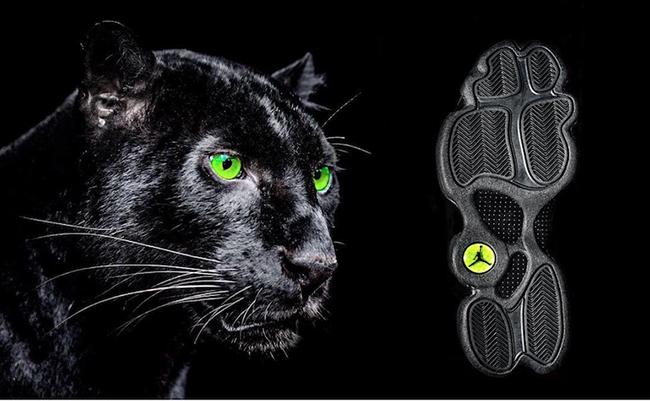 Air Jordan 13 Black Cat Panther