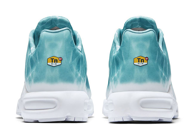 Nike Air Max Plus Water Pool