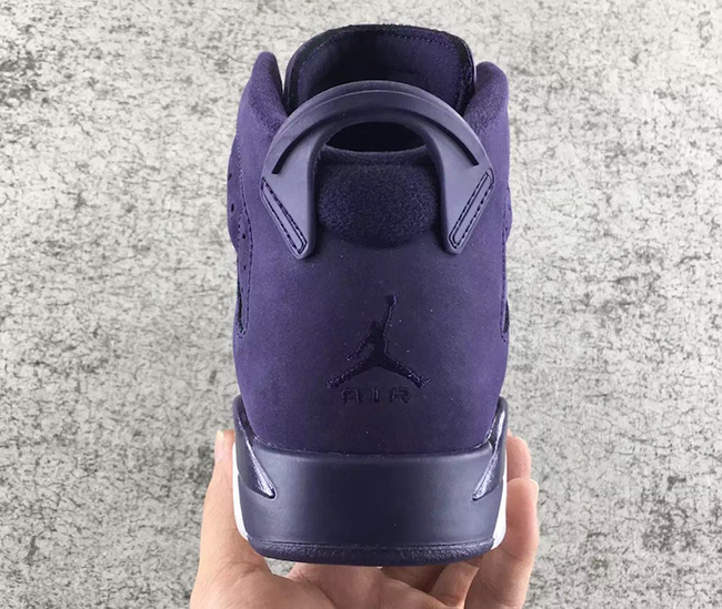 Air Jordan 6 GS Purple Dynasty
