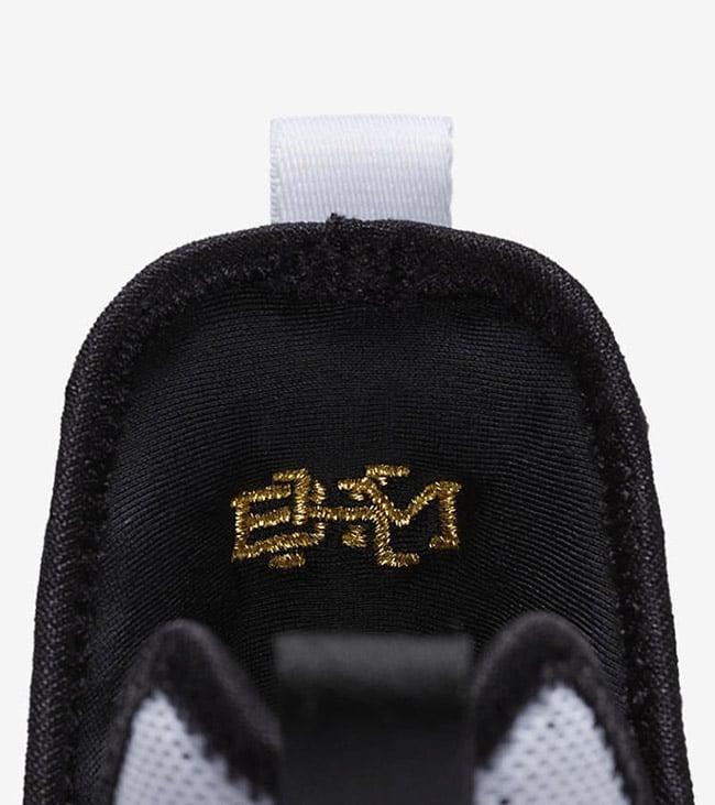 Nike LeBron 14 BHM Black History Month