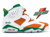 Gatorade Air Jordan 6 2017