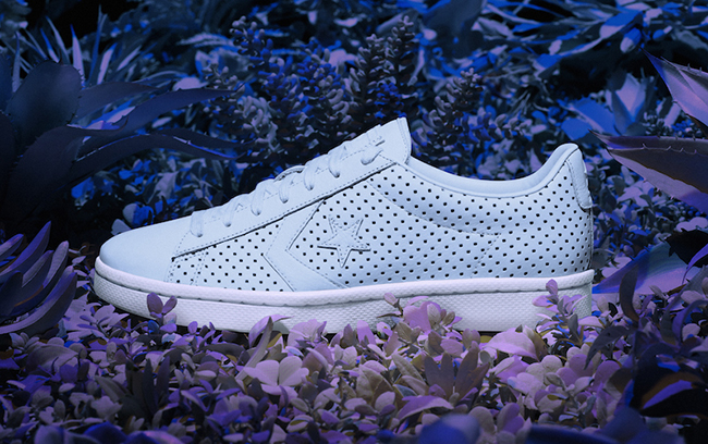 Converse Pro Leather 76 Botanical Garden Pack