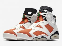 Air Jordan 6 Like Mike Gatorade 384664-145