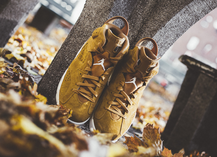 Air Jordan 6 Wheat On Feet