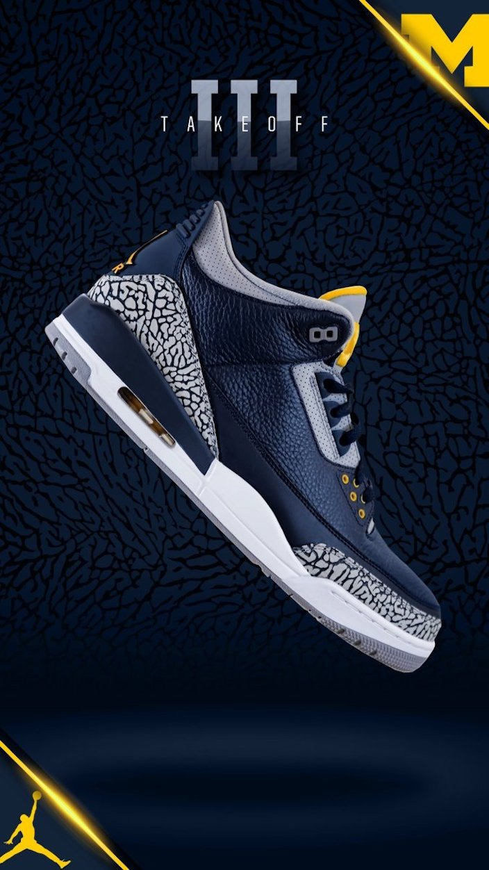 Air Jordan 3 Michigan PE
