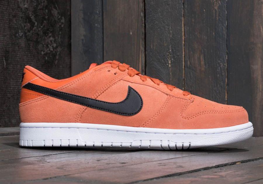 Nike Dunk Low Terra Orange 904234-800