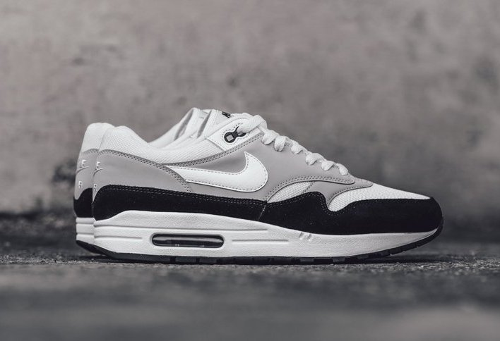 Nike Air Max 1 Wolf Grey AH8145 003 | SneakerFiles