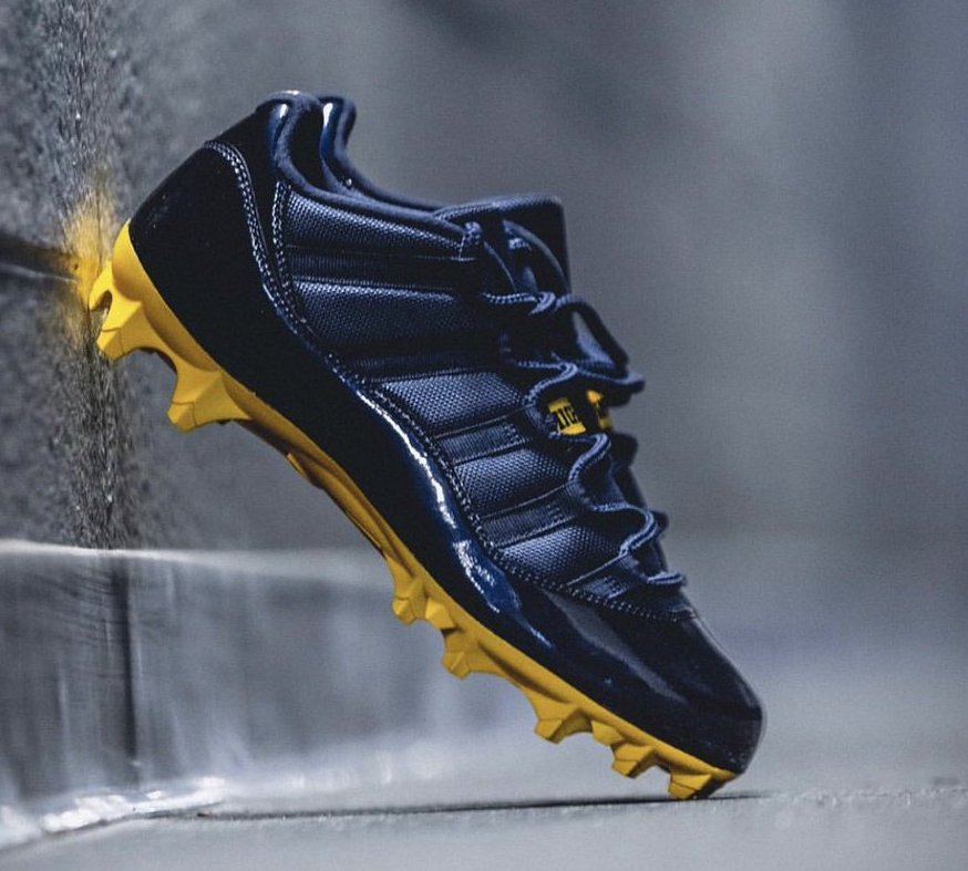 Michigan Air Jordan 11 Cleats Low