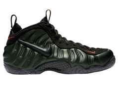 Sequoia Nike Air Foamposite Pro 624041-304