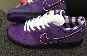 Concepts Nike SB Dunk Low Purple Lobster Release Date Info