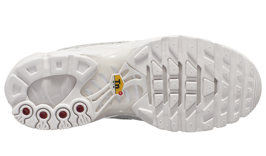 Nike Air Max Plus AR0970-002 Release Date
