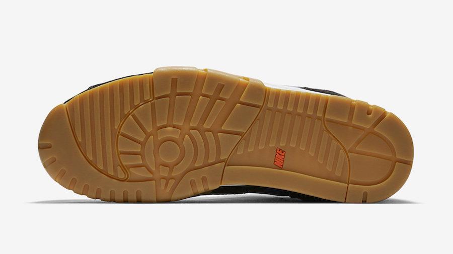 Polar Nike SB Air Trainer 1 CI6892-001 Release Details