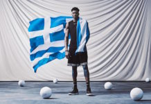 Giannis Antetokounmpo Nike Zoom Freak 1