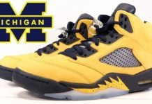Air Jordan 5 Michigan 2019