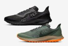 Nike Pegasus 36 Trail Gore-Tex Release Date Info