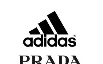 Prada adidas Sailing Release Date Info