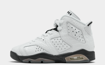 Air Jordan 6 GS Alligator 384665-110 Release Date