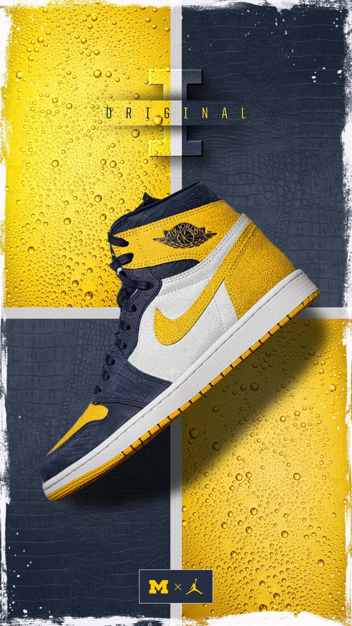 Air Jordan 1 Michigan PE