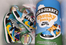 Ben and Jerry Nike SB Dunk Low Pint Box