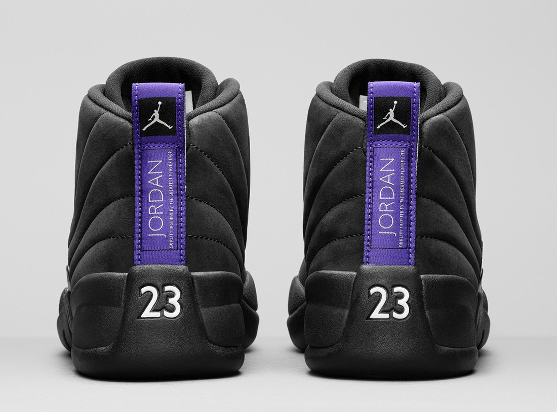 Air Jordan 12 Retro Concord CT8013-005 Release Info