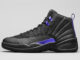 Air Jordan 12 Retro Concord CT8013-005 Release Info