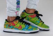 Civilist Nike SB Dunk Low CZ5123-001 On Feet