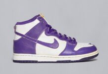 Nike Dunk High Varsity Purple DC5382-100