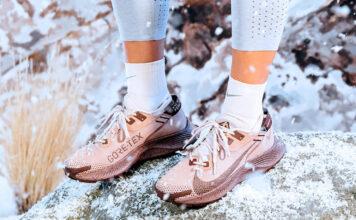Nike Pegasus Trail 2 Gore-Tex Release Date Info