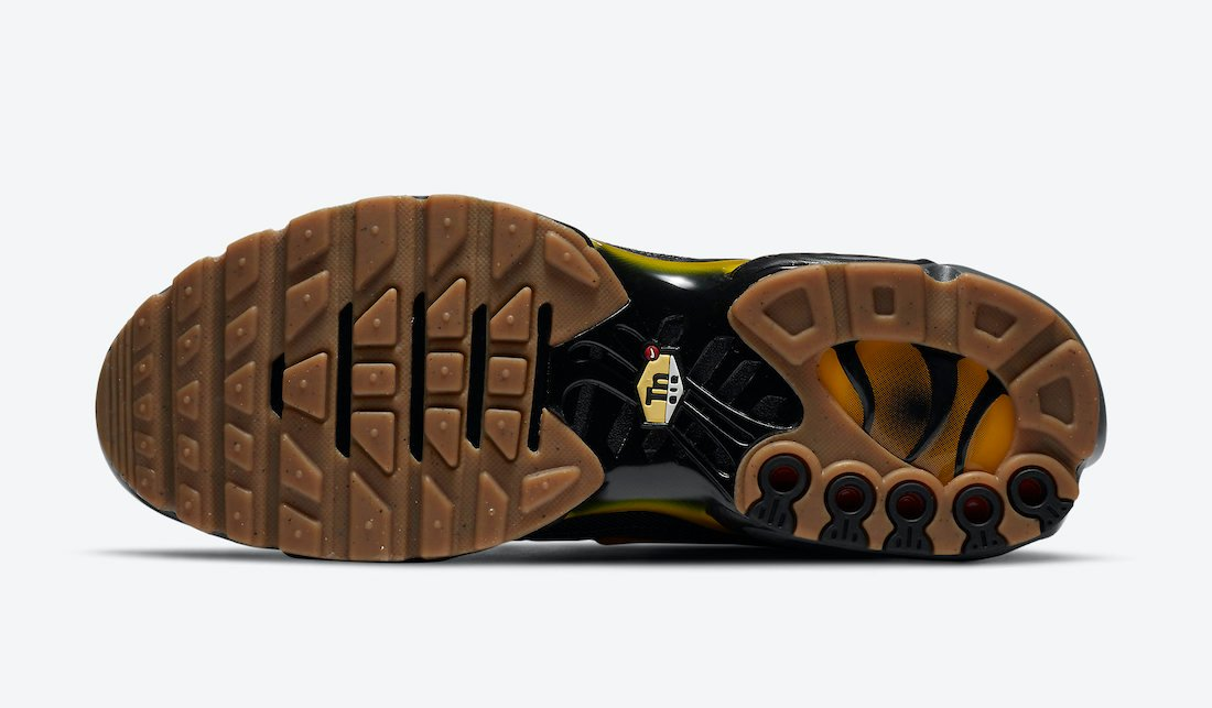 Nike Air Max Plus Fresh Perspective DC7392-300 Release Date Info