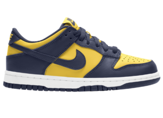 Nike Dunk Low Michigan DD1391-700