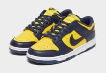 Nike Dunk Low Michigan DD1391-700 Release Info Price