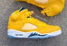 Air Jordan 5 Michigan 2021 PE