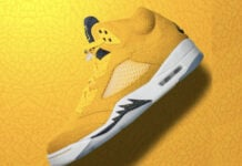 Air Jordan 5 Michigan Wolverines PE