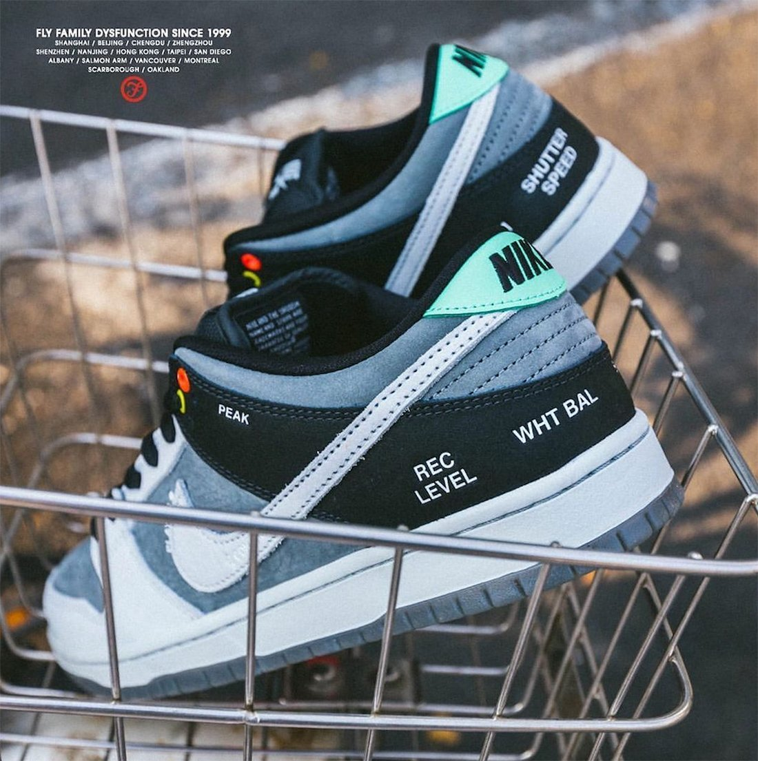 Nike SB Dunk Low Camcorder Release Date Info